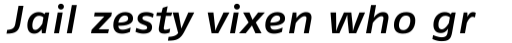 FF Fago Pro Extended Medium Italic sample