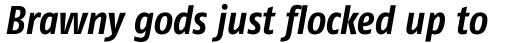 FF Fago Std Condensed Bold Italic sample
