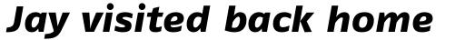 FF Fago Std Extended Extra Bold Italic sample