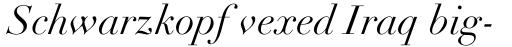 Linotype Didot Std Italic sample