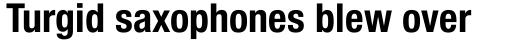 Neue Helvetica Pro 77 Condensed Bold sample