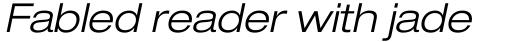 Neue Helvetica Pro 43 Extended Light Oblique sample