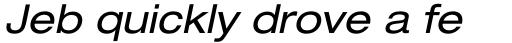 Neue Helvetica Pro 53 Extended Oblique sample