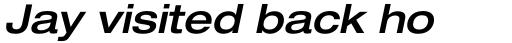 Neue Helvetica Pro 63 Extended Medium Oblique sample