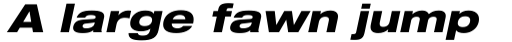 Neue Helvetica Pro 83 Extended Heavy Oblique sample