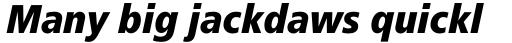Frutiger Pro 88 Extra Black Condensed Italic sample