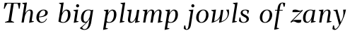 TT Barrels Italic sample