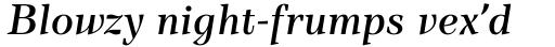 TT Barrels Demi Bold Italic sample