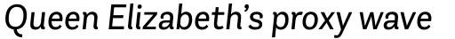 Andes Neue Book Italic sample