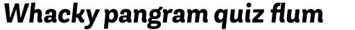 Andes Neue Bold Italic sample