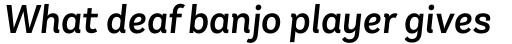Andes Neue Alt 2 Medium Italic sample