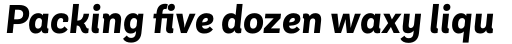 Andes Neue Alt 3 Bold Italic sample