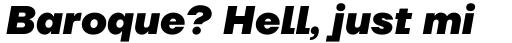 TT Firs Neue Extra Bold Italic sample