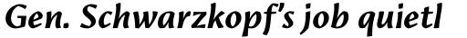 Amrys Bold Italic sample