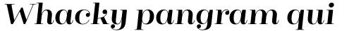 Cagliari Bold Italic sample