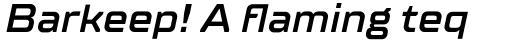 TT Supermolot Neue Expanded DemiBold Italic sample