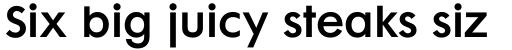 Futura Maxi Pro Demi sample