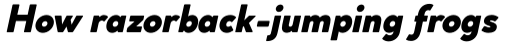 Cocogoose Classic Extra Bold Italic sample