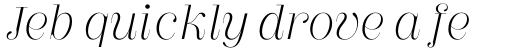 Couturier Poster Light Italic sample