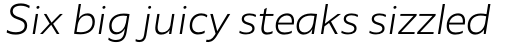 Agile Sans Light Italic sample