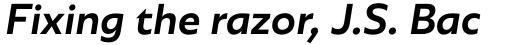 Agile Sans Medium Italic sample