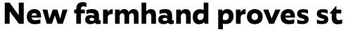 Agile Sans Bold sample