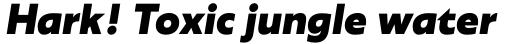 Agile Sans Extra Bold Italic sample
