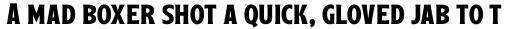 Leftfield Serif Bold sample