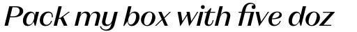 Magnat Head Medium Italic sample