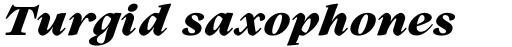 Lovelace Text Extrabold Italic sample