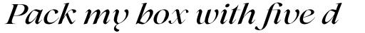 Lovelace Medium Italic sample
