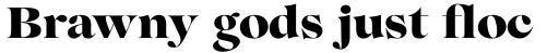 Lovelace Extrabold sample