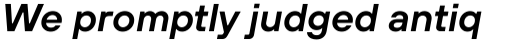 TT Hoves Demi Bold Italic sample