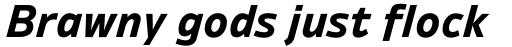 Ambiguity Normate Bold Italic sample
