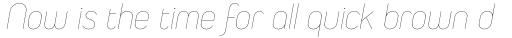 Duepuntozero Pro Thin Italic sample