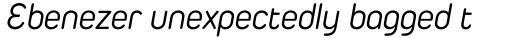 Duepuntozero Pro Book Italic sample
