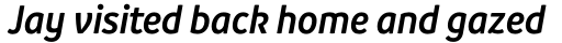 Branding SF Narrow Semi Bold Italic sample