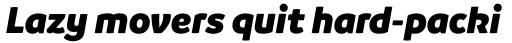 Branding SF Black Italic sample