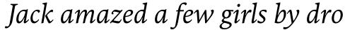 FF Kievit Serif Italic sample