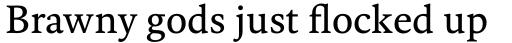 FF Kievit Serif Book sample
