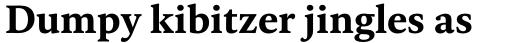 FF Kievit Serif Bold sample