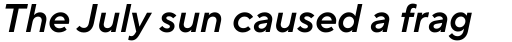 TT Norms Pro Demi Bold Italic sample