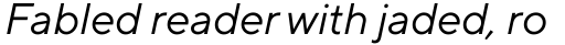 TT Norms Pro Variable Italic sample