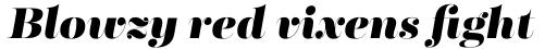 Fabrica Heavy Italic sample