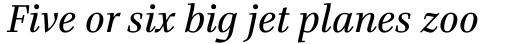 Bridge Text Regular Italic sample