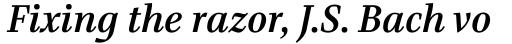 Bridge Text Medium Italic sample