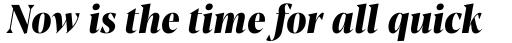 Blacker Pro Display Condensed Extrabold Italic sample
