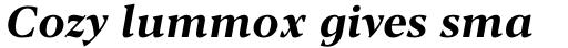 Blacker Pro Text Bold Italic sample