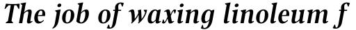 Blacker Pro Text Condensed Medium Italic sample