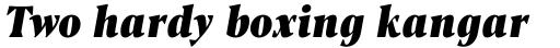 Blacker Pro Text Condensed Heavy Italic sample